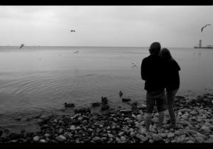 Favim.com-animal-birds-black-and-white-boy-couple-couples-46900